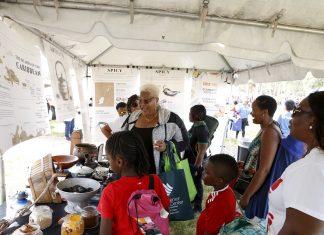 'Taste the Islands' Caribbean Culinary Museum