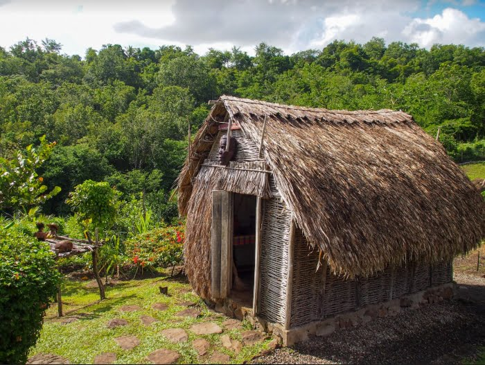 Caribbean Black and Indigenous History