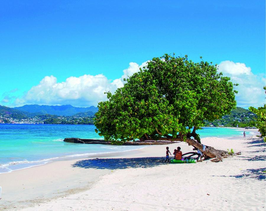 Caribbean diving vacations - Coral Reefs in Grenada